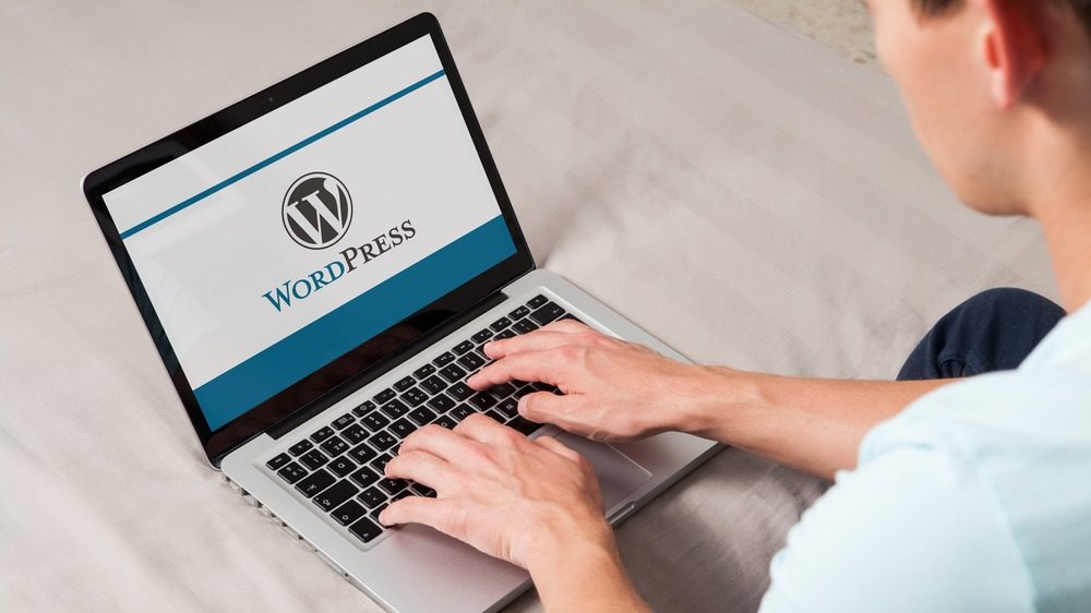 有料ブログ(ワードプレス)のメリット、デメリット