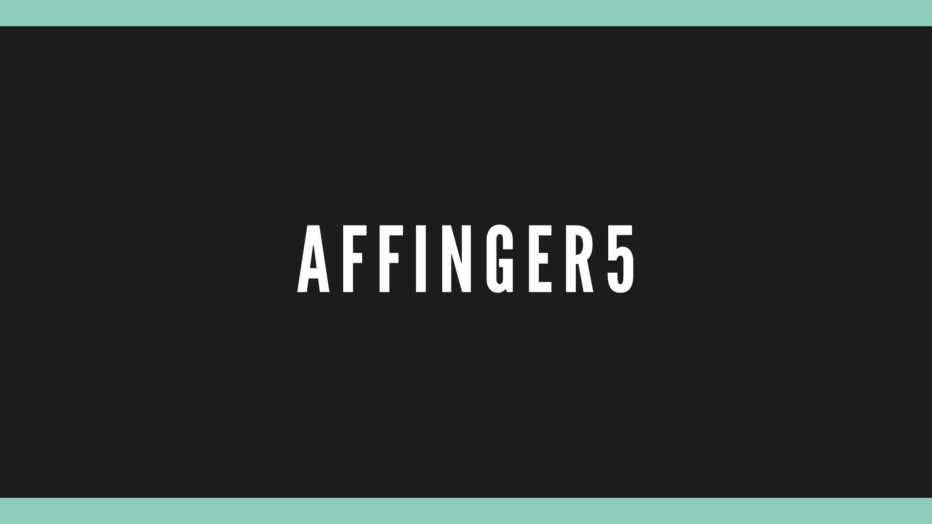 AFFINGER5購入特典